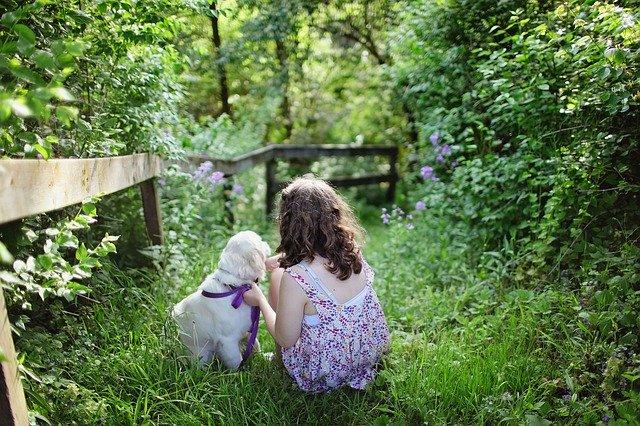 pes a dítě na zahradě